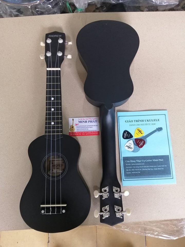 đàn ukulele màu đen giá rẻ tại nhạc cụ quận bình tân
