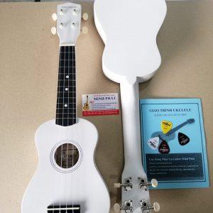 Mua đàn ukulele màu trắng tại nhạc cụ quận bình tân tphcm
