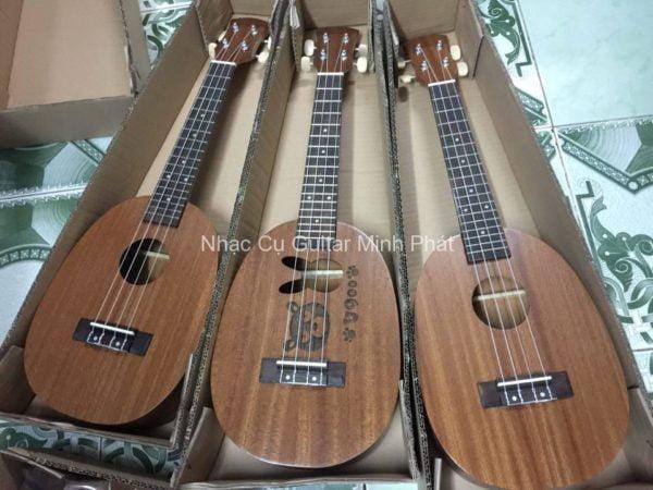 shop đàn ukulele concert giá rẻ Tp.HCM