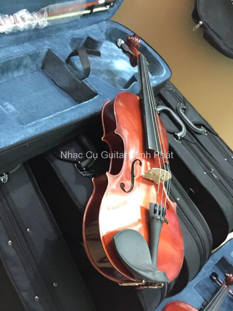 Đàn violin giá rẻ Tphcm