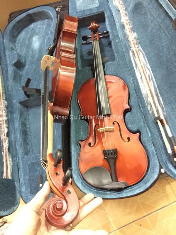shop đàn violin giá rẻ