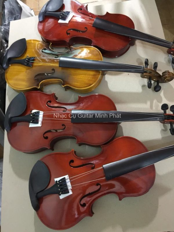 violin giá rẻ tphcm