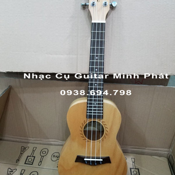 Đàn ukulele concert giá rẻ tphcm