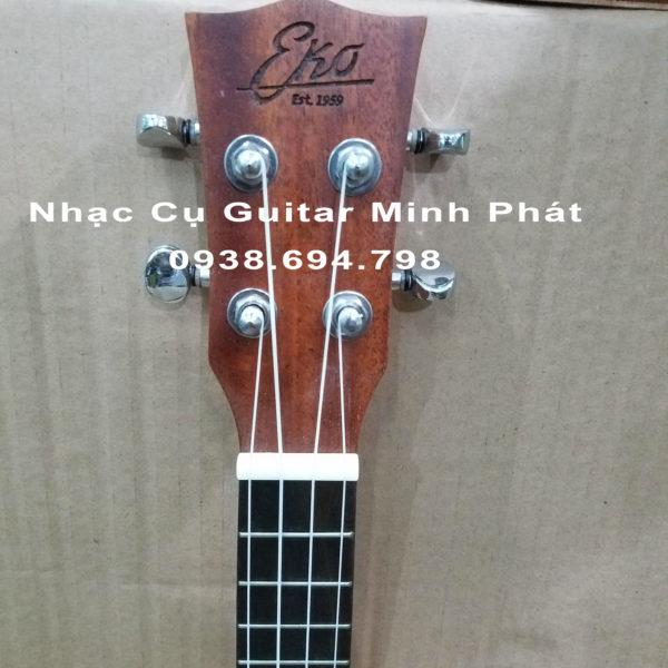 ukulele concert tphcm