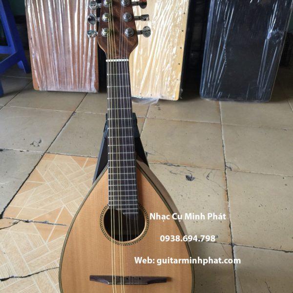 đàn mandolin giá rẻ