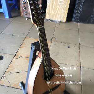 mua đàn mandolin giá rẻ tại tphcm