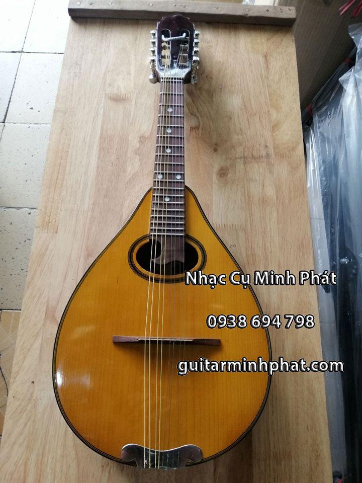 Cửa hàng bán đàn mandolin giá rẻ tphcm