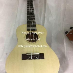 dan ukulele concert gia re (10)