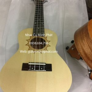 dan ukulele concert gia re (14)