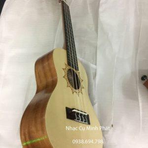 dan ukulele concert gia re (17)