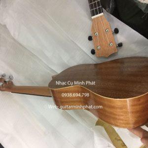 dan ukulele concert gia re (6)