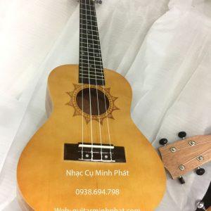 dan ukulele concert gia re (8)