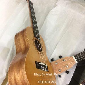 dan ukulele concert gia re (9)