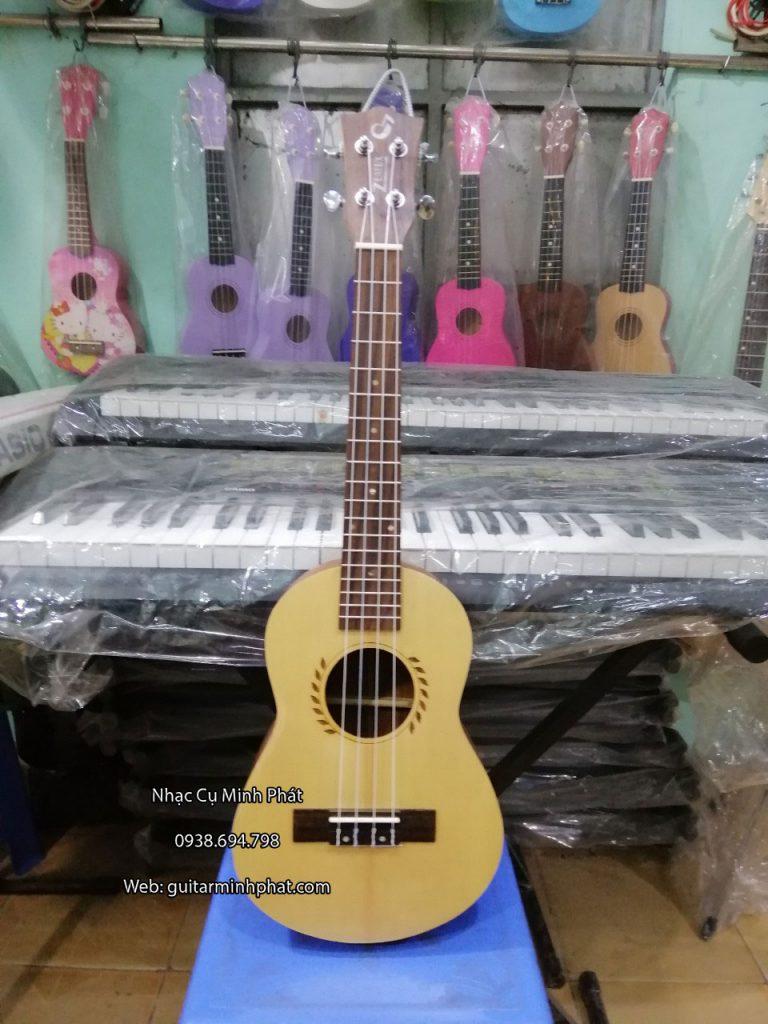 cửa hàng bán đàn ukulele tenor tại tphcm