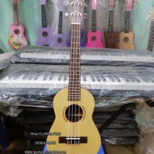 ban-dan-ukulele-tenor-gia-re-tphcm (4)