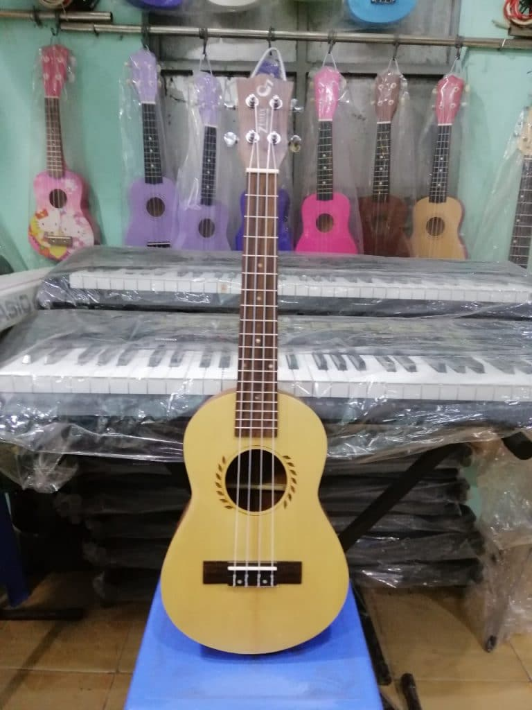 Mua đàn ukulele giá rẻ ở đâu tại tphcm