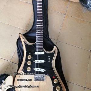 gia-dan-guitar-dien-tesco-bao-nhieu