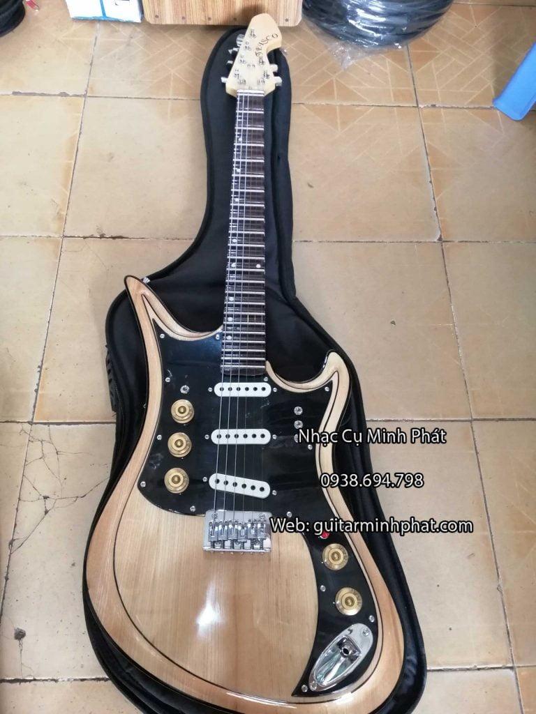 Cửa hàng chuyên mua bán đàn guitar điện tesco giá rẻ bình tân