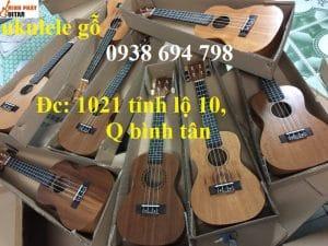Nên chọn mua đàn ukulele địa chỉ nào thì uy tín?