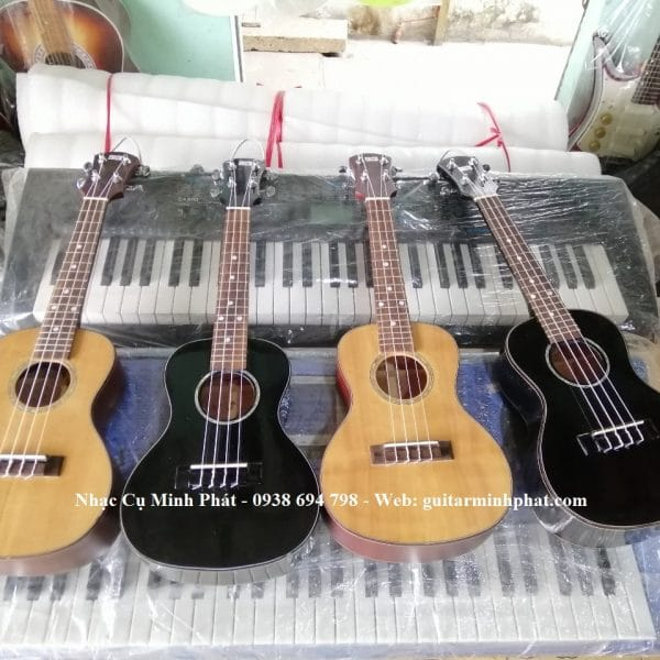 dan-ukulele-concert-go-hong-dao