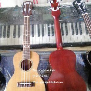 ukulele-concert-go-hong-dao