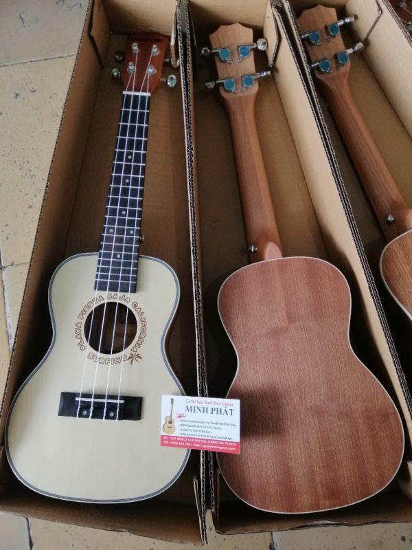 ban-dan-ukulele-concert-g-danube-tai-tphcm (1)