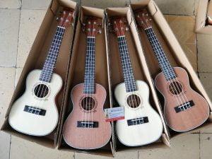 Cửa hàng bán đàn ukulele tại quận gò vấp tphcm