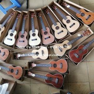 cua-hang-dan-ukulele-concert-desiver