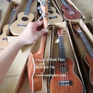 dan-ukulele-concert-Deviser