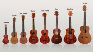 Cửa hàng đàn ukulele Minh Phát - những dòng đàn ukulele cơ bản khi mới bắt đầu tập chơi đàn ukulele
