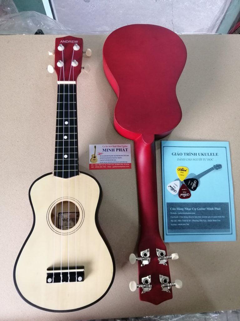 Những mẫu đàn ukulele chất lương tại Ukulele Minh Phát , HÌnh ảnh thật tế shop chụp tại cửa hàng