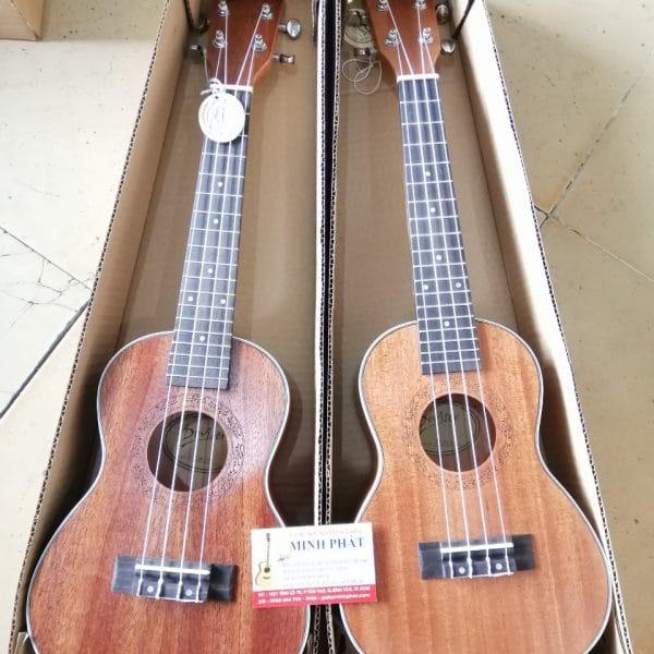 shop-dan-ukulele-concert-desiver