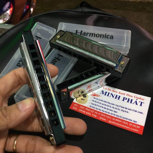 kèn harmonica diatonic 10 lỗ giá rẻ tphcm