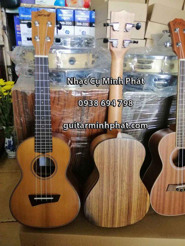 shop đàn ukulele concert giá rẻ tại tphcm