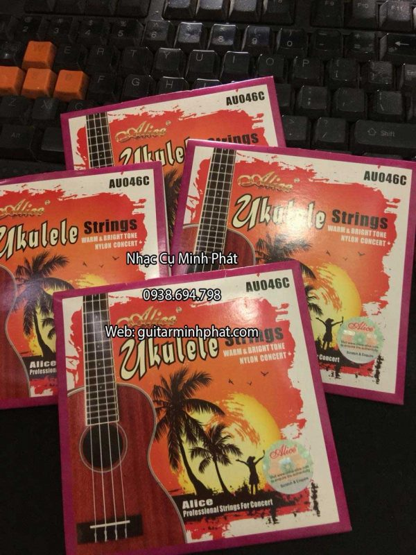 day-dan-ukulele-cao-cap-(1)
